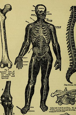 Is Osteopathy right for me?
